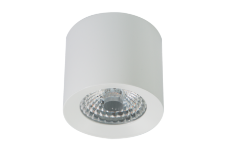 led-ceiling-spot-ww